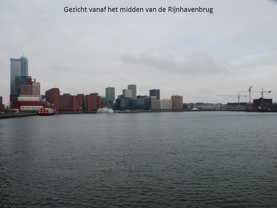 Gezicht vanaf het midden van de Rijnhavenbrug