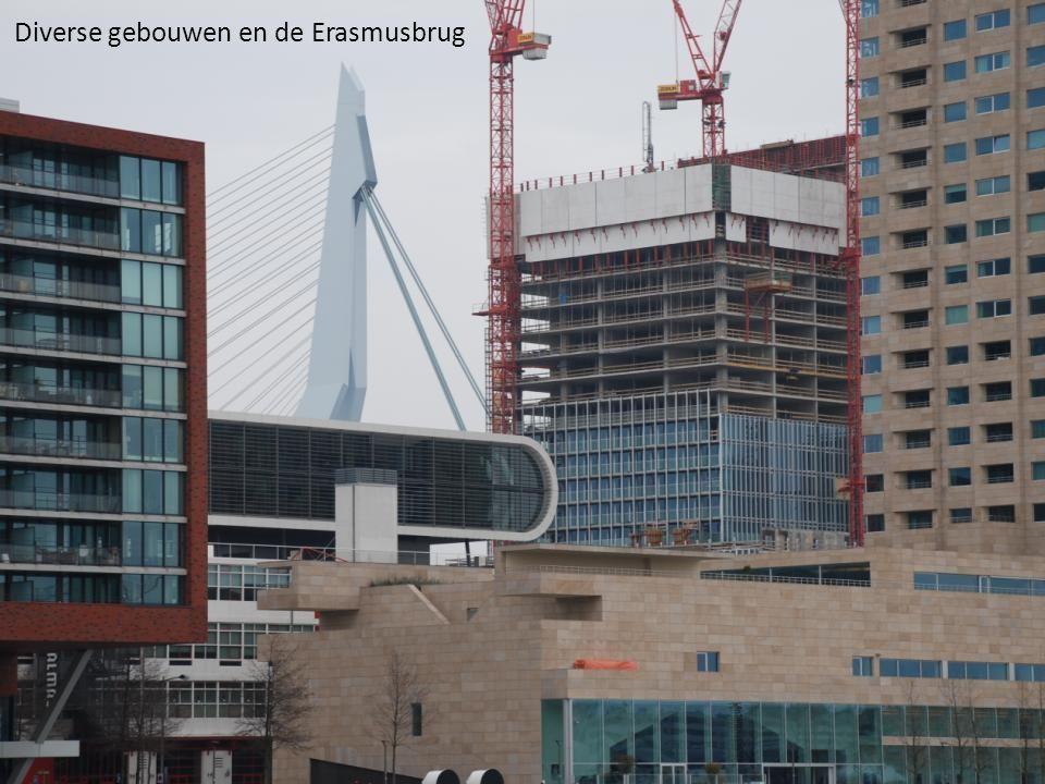 Diverse gebouwen en de Erasmusbrug