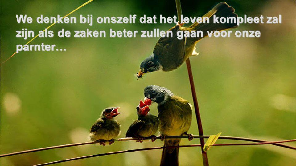 We denken bij onszelf dat het leven kompleet zal zijn als de zaken beter zullen gaan voor onze parnter…