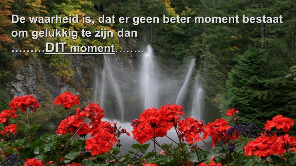 De waarheid is, dat er geen beter moment bestaat om gelukkig te zijn dan ……… DIT moment……..