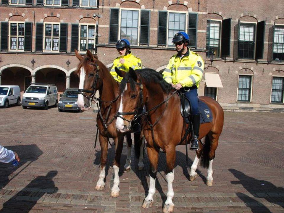 Er is altijd Politie aanwezig in het Binnenhof