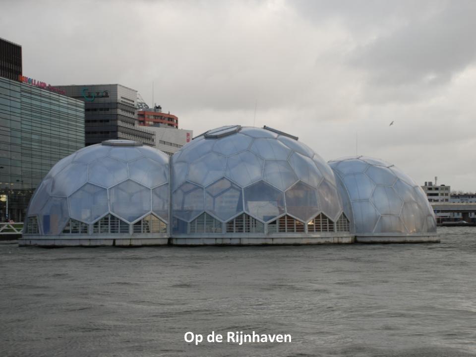 Op de Rijnhaven