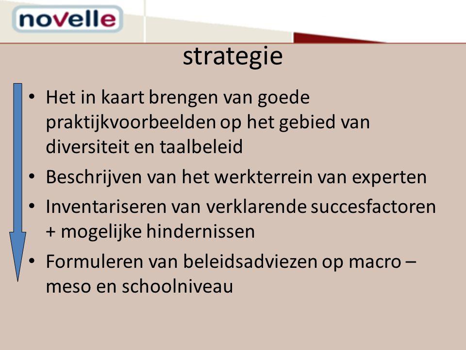 strategie Het in kaart brengen van goede praktijkvoorbeelden op het gebied van diversiteit en taalbeleid Beschrijven van het werkterrein van experten