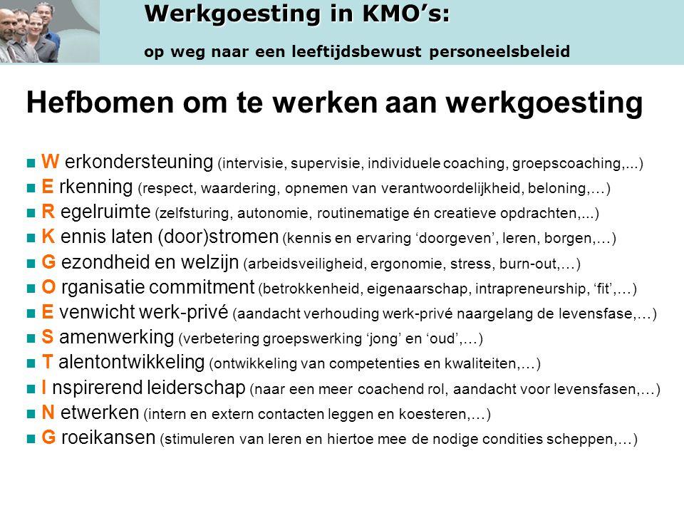 Werkgoesting in KMO's: op weg naar een leeftijdsbewust personeelsbeleid Hefbomen om te werken aan werkgoesting W erkondersteuning (intervisie, supervi