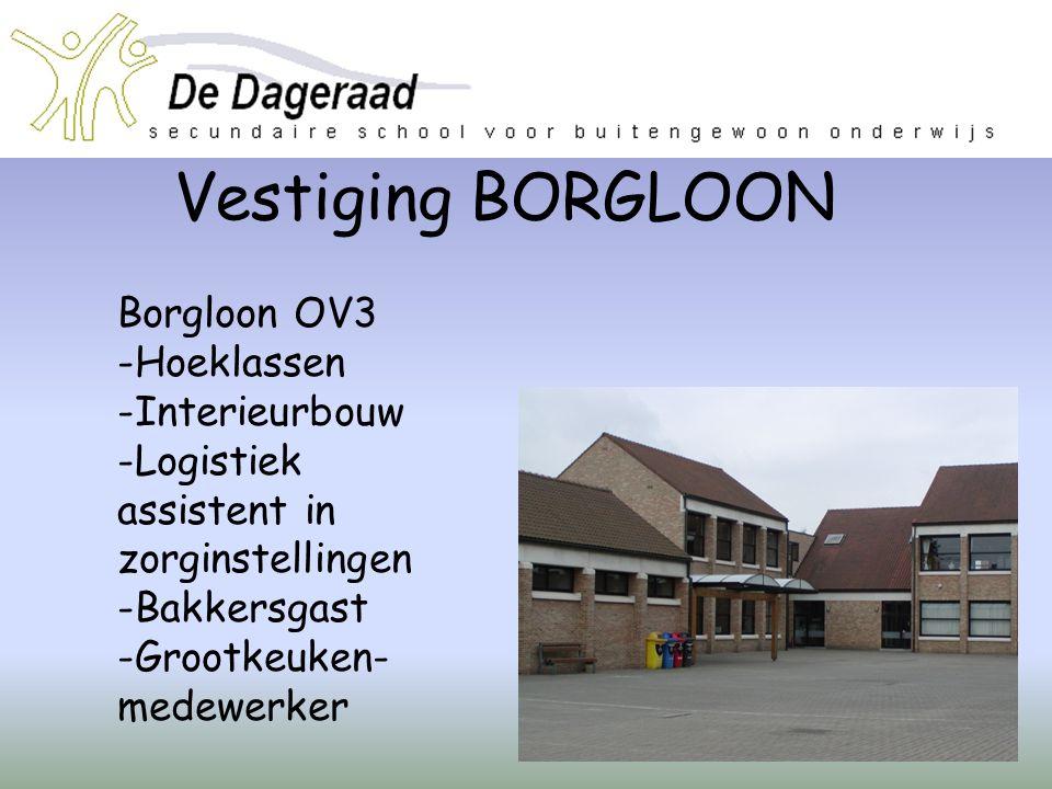 Vestiging BORGLOON Borgloon OV3 -Hoeklassen -Interieurbouw -Logistiek assistent in zorginstellingen -Bakkersgast -Grootkeuken- medewerker