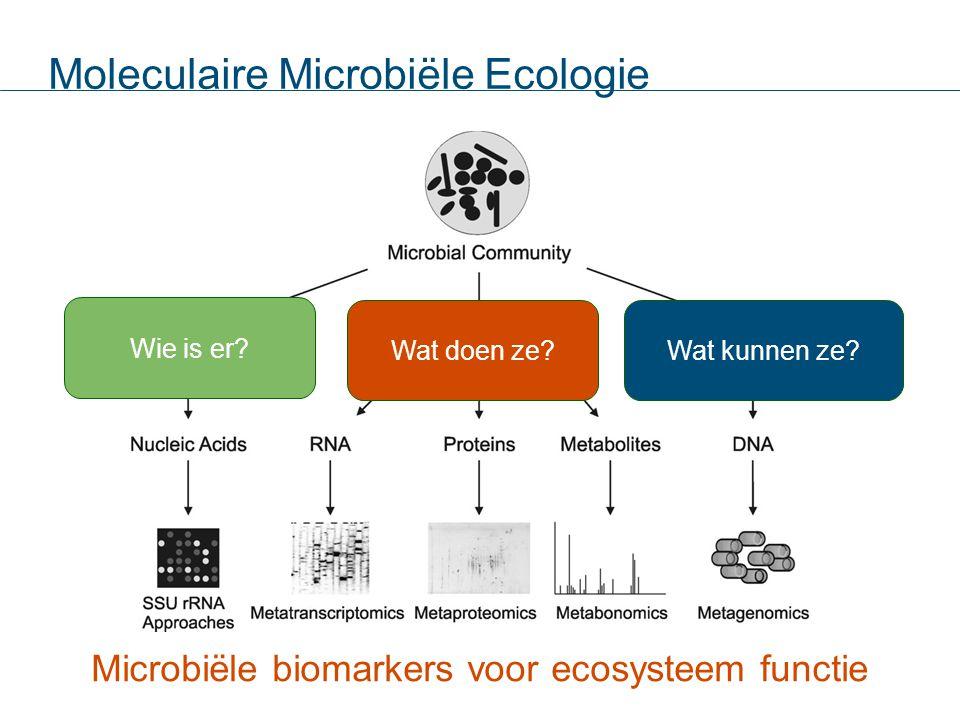 Microbiële biomarkers voor ecosysteem functie Moleculaire Microbiële Ecologie Wie is er? Wat doen ze?Wat kunnen ze?