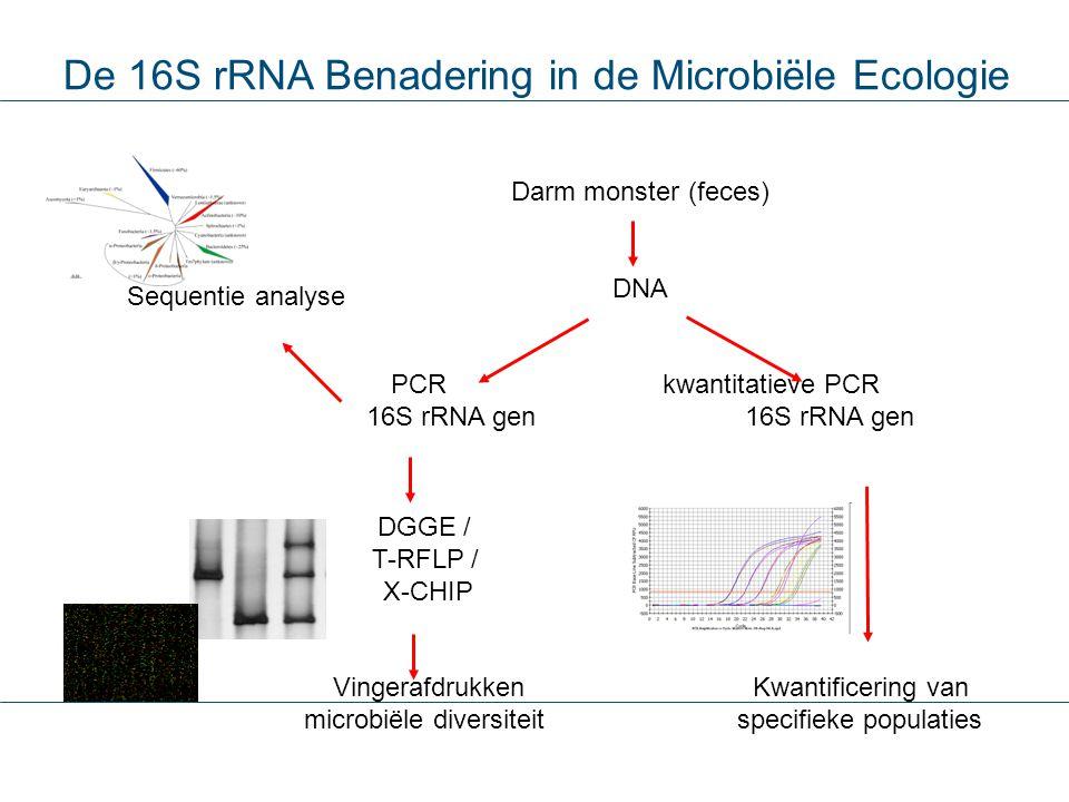 Darm monster (feces) DNA PCR kwantitatieve PCR 16S rRNA gen DGGE / T-RFLP / X-CHIP Vingerafdrukken microbiële diversiteit Kwantificering van specifiek