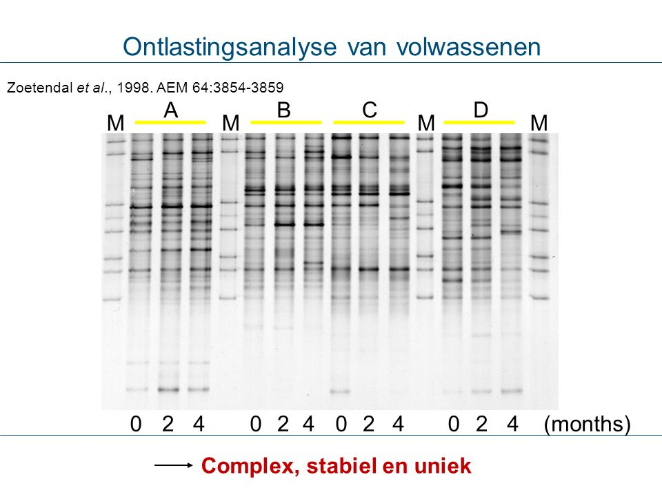 Ontlastingsanalyse van volwassenen MMMM AB DC 000022224 (months)444 Zoetendal et al., 1998. AEM 64:3854-3859 Complex, stabiel en uniek