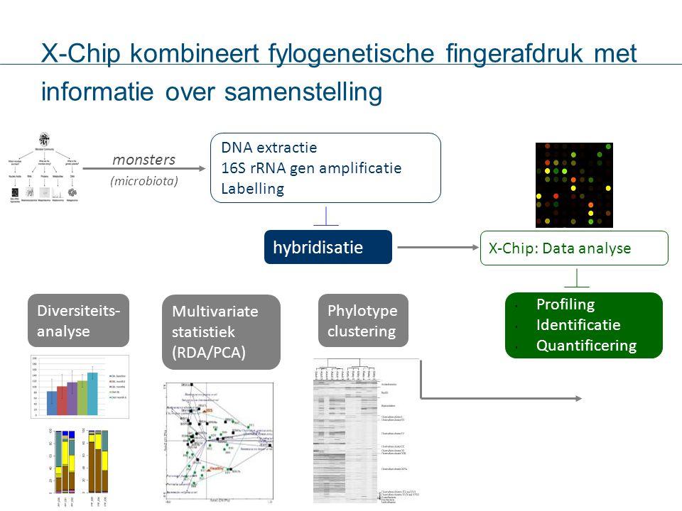 X-Chip kombineert fylogenetische fingerafdruk met informatie over samenstelling DNA extractie 16S rRNA gen amplificatie Labelling hybridisatie monster