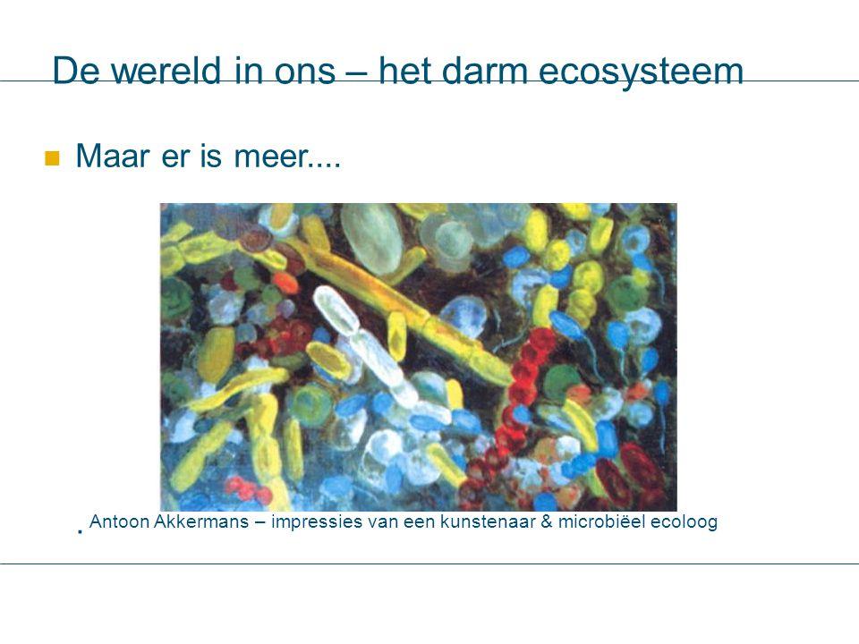 De wereld in ons – het darm ecosysteem Maar er is meer....  Antoon Akkermans – impressies van een kunstenaar & microbiëel ecoloog