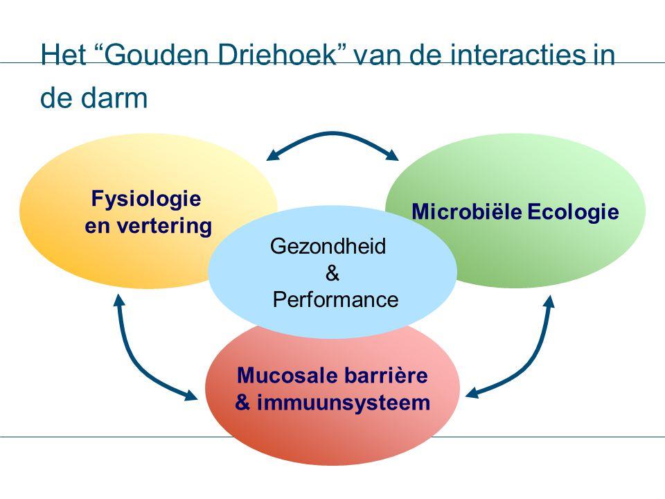 """Het """"Gouden Driehoek"""" van de interacties in de darm Mucosale barrière & immuunsysteem Microbiële Ecologie Fysiologie en vertering Gezondheid & Perform"""