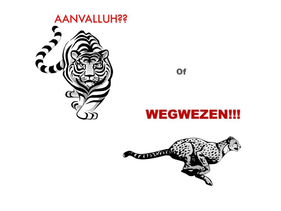 AANVALLUH?? Of WEGWEZEN!!!