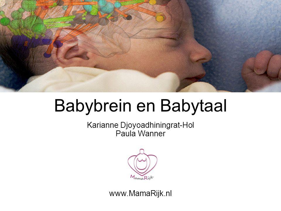 Babybrein en Babytaal Karianne Djoyoadhiningrat-Hol Paula Wanner www.MamaRijk.nl