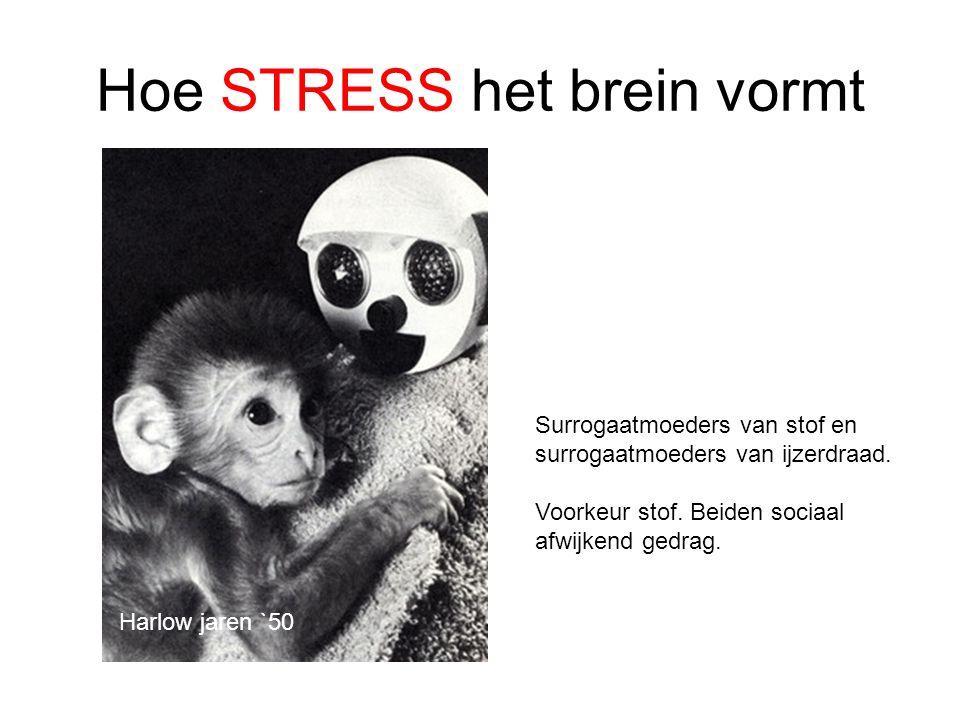 Hoe STRESS het brein vormt Surrogaatmoeders van stof en surrogaatmoeders van ijzerdraad. Voorkeur stof. Beiden sociaal afwijkend gedrag. Harlow jaren