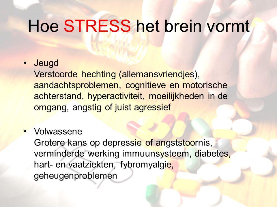 Hoe STRESS het brein vormt Jeugd Verstoorde hechting (allemansvriendjes), aandachtsproblemen, cognitieve en motorische achterstand, hyperactiviteit, m