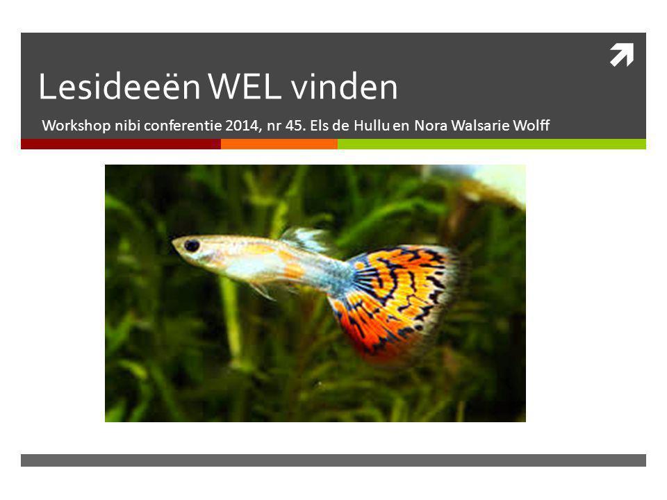  Lesideeën WEL vinden Workshop nibi conferentie 2014, nr 45. Els de Hullu en Nora Walsarie Wolff