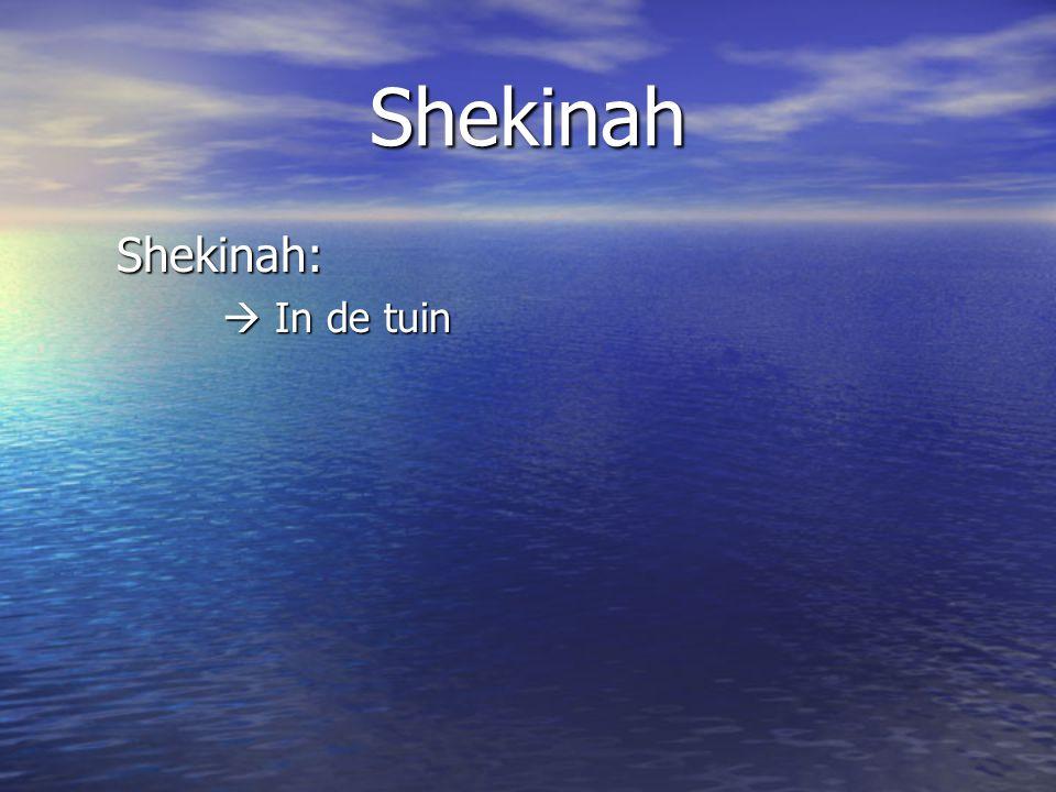 Shekinah Shekinah:  In de tuin