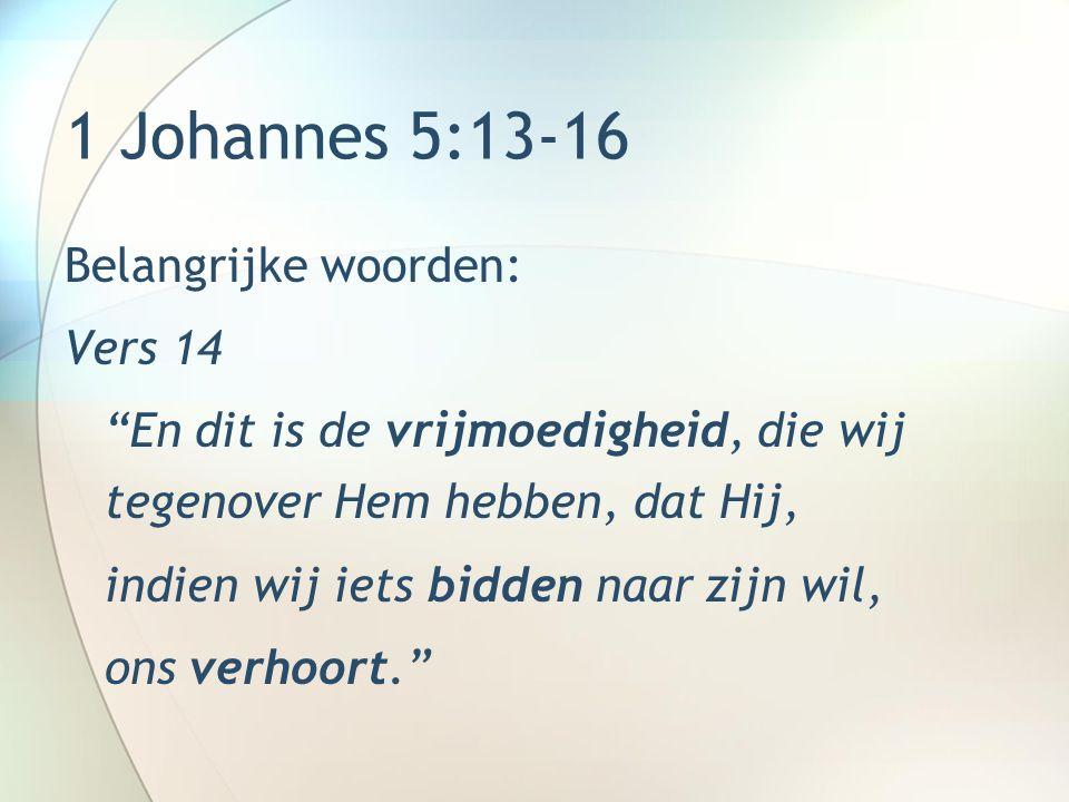 1 Johannes 5:13-16 Belangrijke woorden: −Vrijmoedigheid (parresia) = vertrouwen en vrijmoedigheid in de aanwezigheid van iemand die boven ons staat.