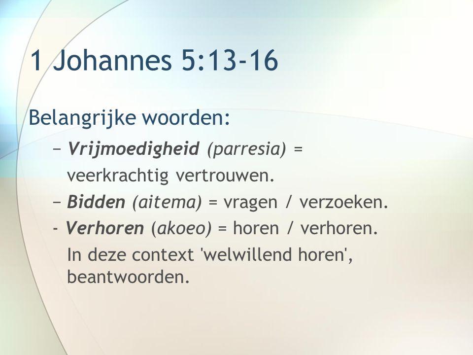 1 Johannes 5:13-16 Belangrijke woorden: −Vrijmoedigheid (parresia) = veerkrachtig vertrouwen.