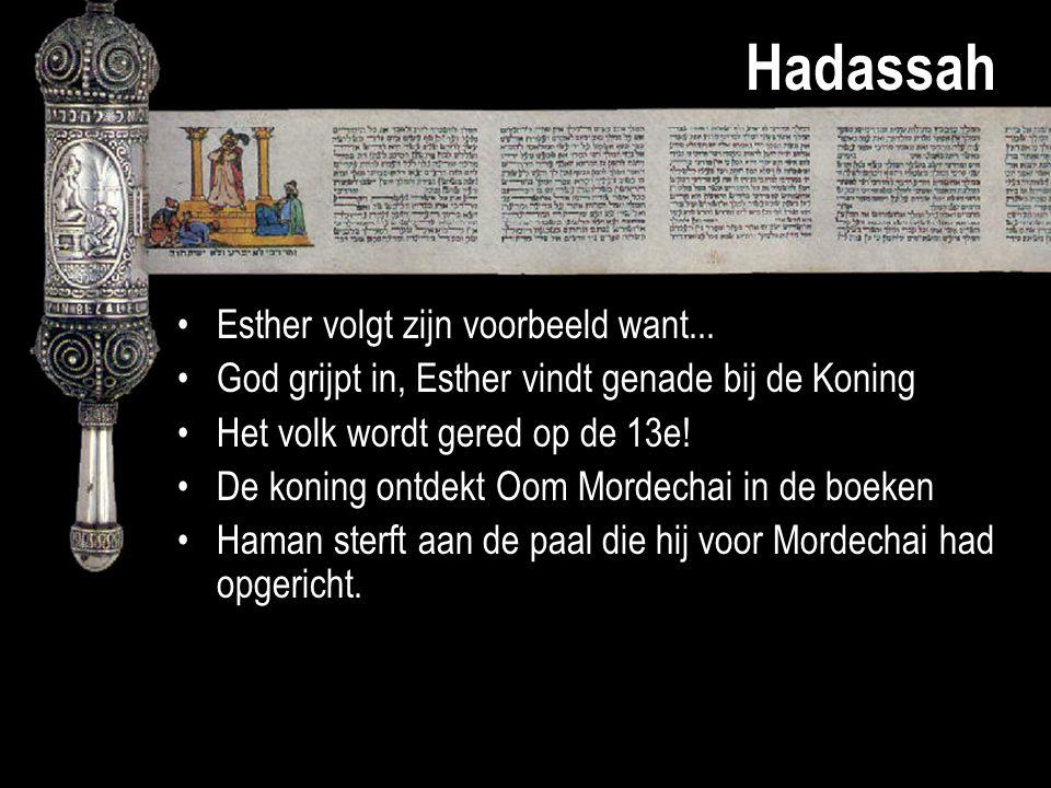 Hadassah Esther volgt zijn voorbeeld want... God grijpt in, Esther vindt genade bij de Koning Het volk wordt gered op de 13e! De koning ontdekt Oom Mo