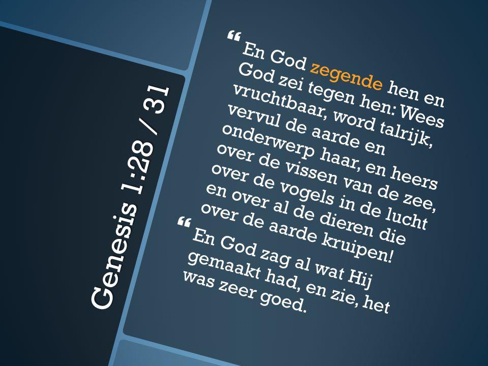 Eerbied voor een keuze… Ik kies de hemel...De Schepper eert ons.