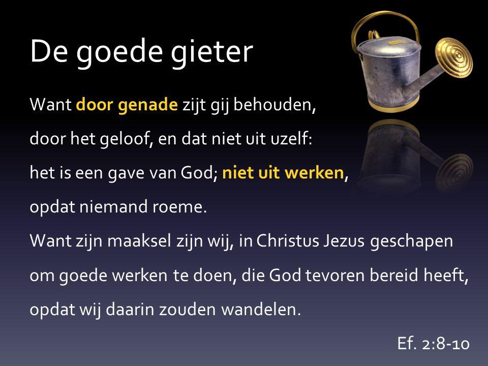 De goede gieter Want door genade zijt gij behouden, door het geloof, en dat niet uit uzelf: het is een gave van God; niet uit werken, opdat niemand ro