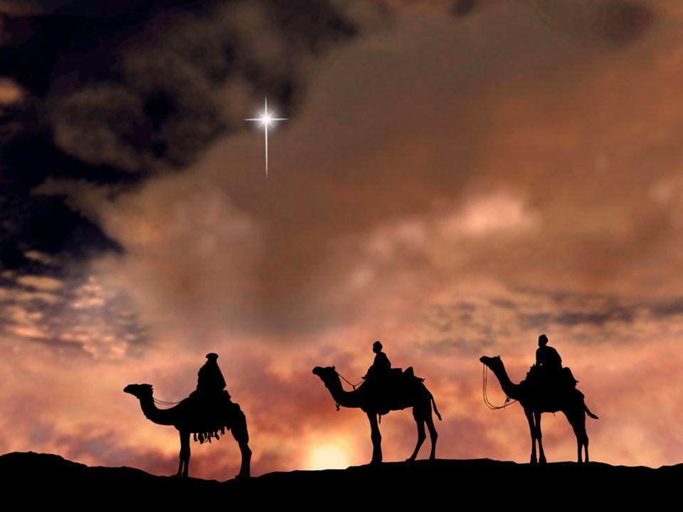 Schatten brengen Psalm 50: 14 Offer Gode lof en betaal de Allerhoogste uw geloften; 15 roep Mij aan ten dage der benauwdheid, Ik zal u redden en gij zult Mij eren.