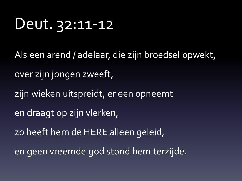 Deut. 32:11-12 Als een arend / adelaar, die zijn broedsel opwekt, over zijn jongen zweeft, zijn wieken uitspreidt, er een opneemt en draagt op zijn vl