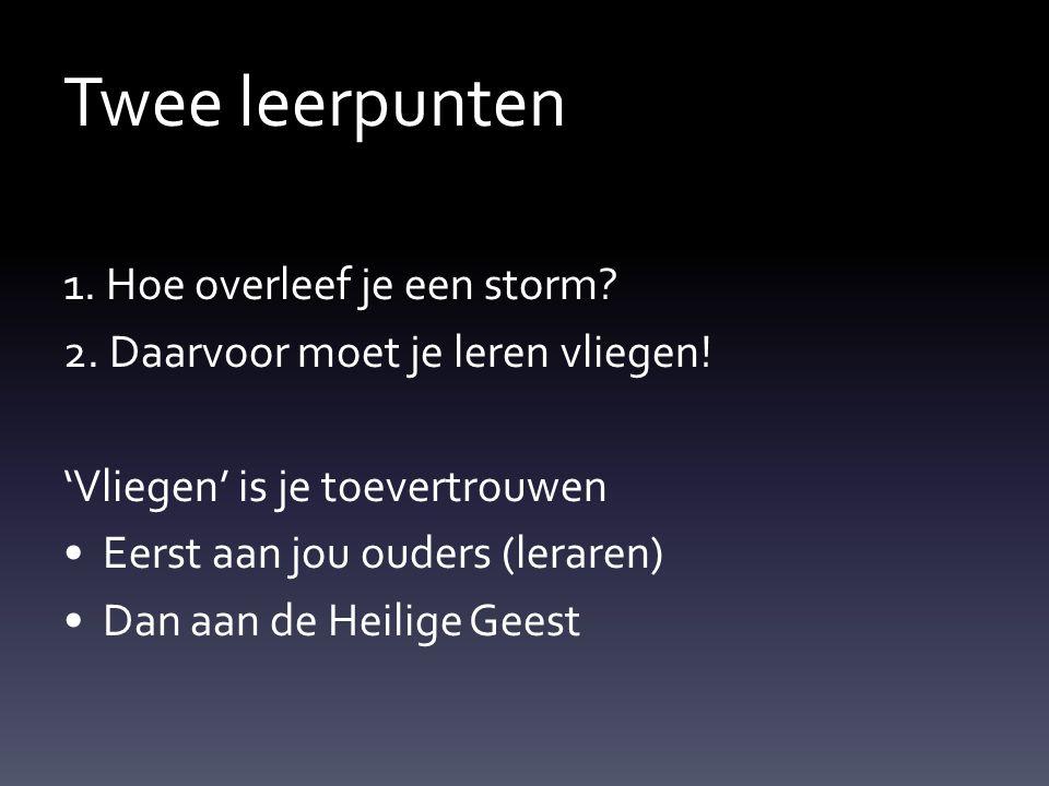 Twee leerpunten 1. Hoe overleef je een storm? 2. Daarvoor moet je leren vliegen! 'Vliegen' is je toevertrouwen Eerst aan jou ouders (leraren) Dan aan