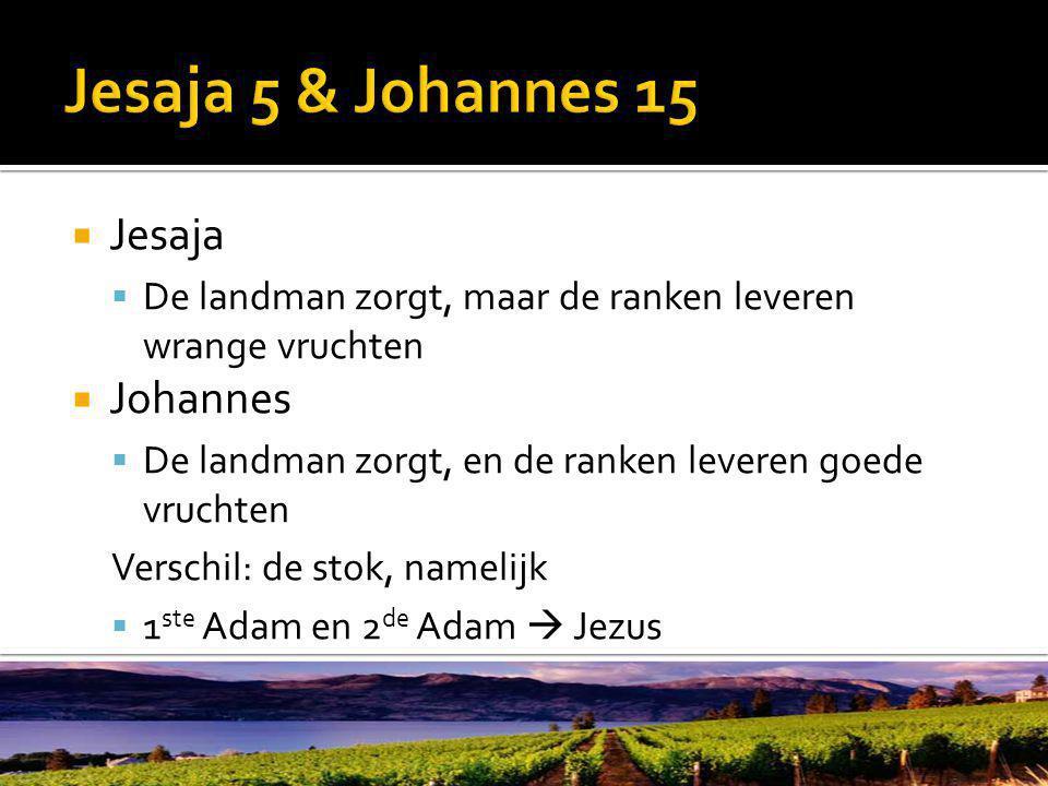  Jesaja  De landman zorgt, maar de ranken leveren wrange vruchten  Johannes  De landman zorgt, en de ranken leveren goede vruchten Verschil: de stok, namelijk  1 ste Adam en 2 de Adam  Jezus
