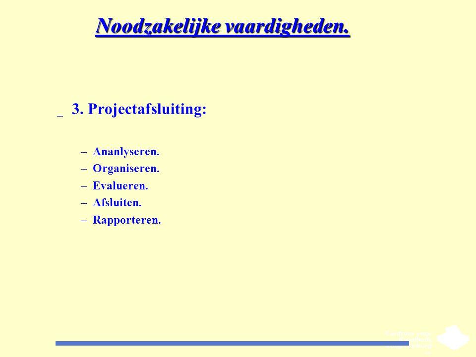 Noodzakelijke vaardigheden. _ 3. Projectafsluiting: –Ananlyseren. –Organiseren. –Evalueren. –Afsluiten. –Rapporteren.