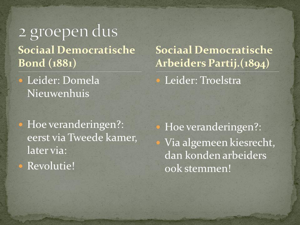 Sociaal Democratische Bond (1881) Leider: Domela Nieuwenhuis Hoe veranderingen?: eerst via Tweede kamer, later via: Revolutie! Sociaal Democratische A