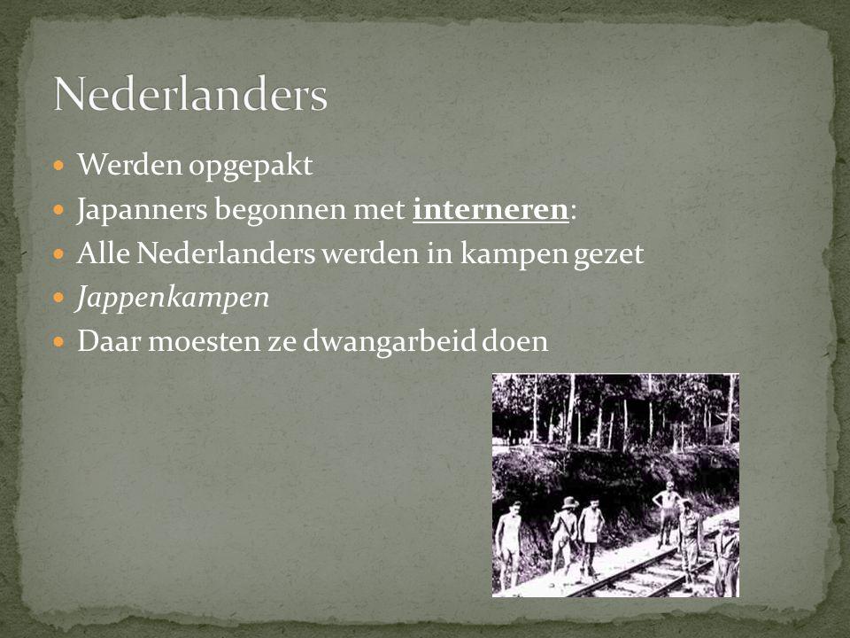 Werden opgepakt Japanners begonnen met interneren: Alle Nederlanders werden in kampen gezet Jappenkampen Daar moesten ze dwangarbeid doen