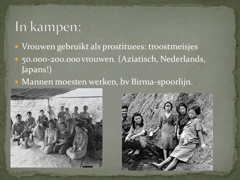 Vrouwen gebruikt als prostituees: troostmeisjes 50.000-200.000 vrouwen. (Aziatisch, Nederlands, Japans!) Mannen moesten werken, bv Birma-spoorlijn.