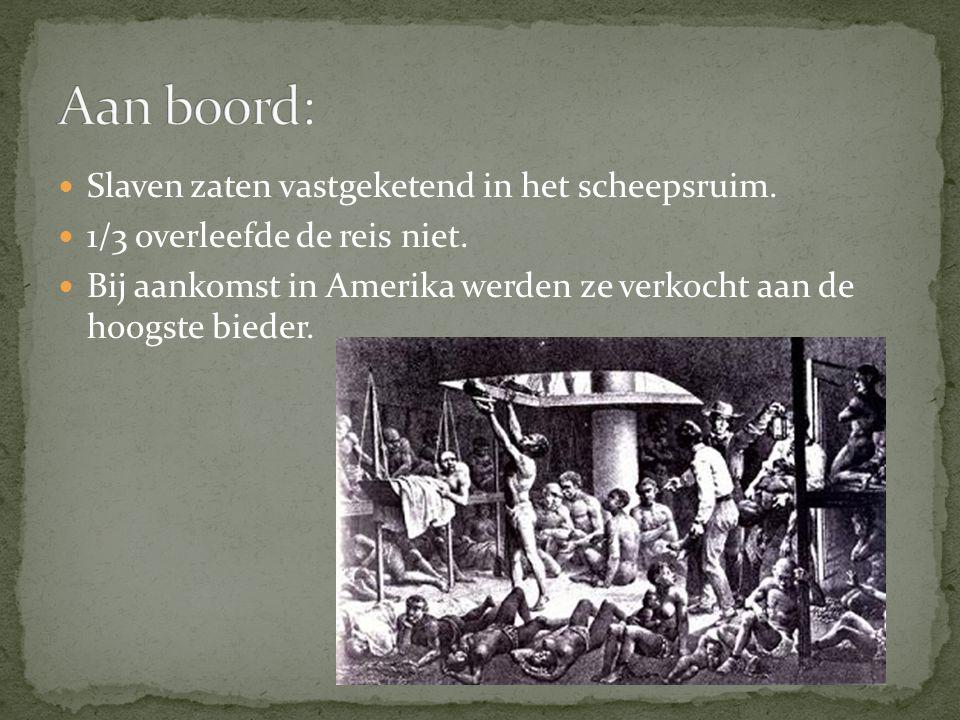 Slaven zaten vastgeketend in het scheepsruim. 1/3 overleefde de reis niet.