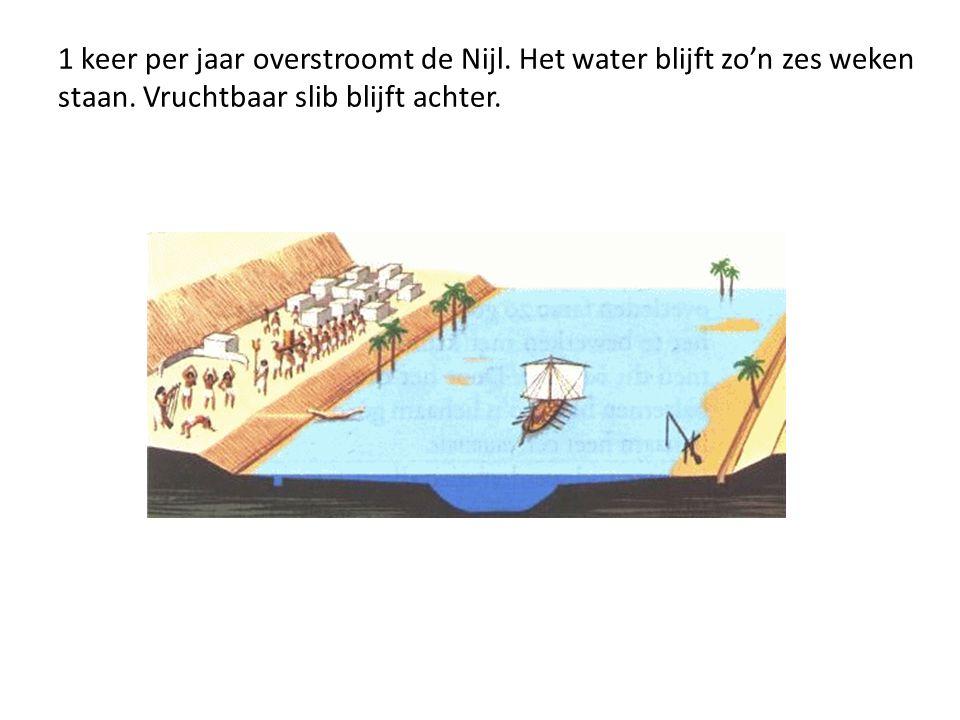1 keer per jaar overstroomt de Nijl. Het water blijft zo'n zes weken staan. Vruchtbaar slib blijft achter.