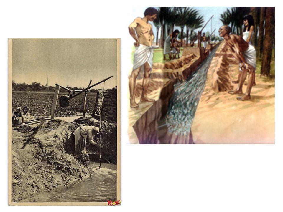 Elke boer moest een deel van zijn oogst afstaan aan de farao.