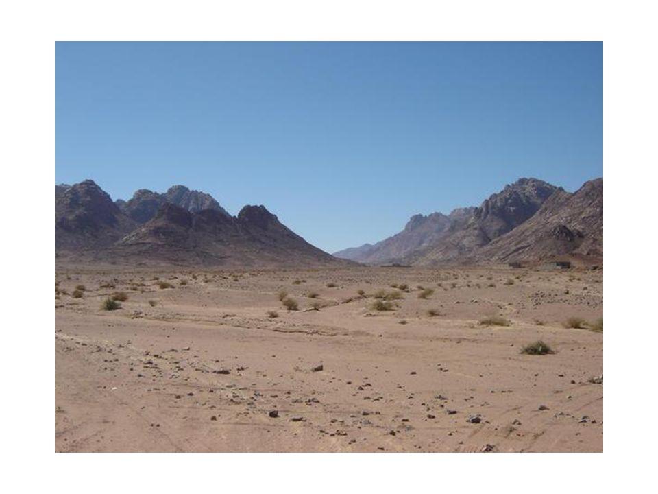 Gevolgen -Verdwijnen Nubische cultuur -Cultuurhistorische monumenten onder water -Ecologische problemen Kunstmest, erosie delta, brak water, verdamping, verspilling