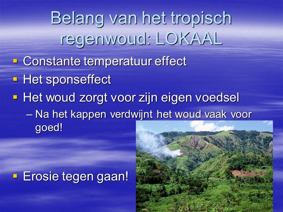 Belang van het tropisch regenwoud: LOKAAL  Constante temperatuur effect  Het sponseffect  Het woud zorgt voor zijn eigen voedsel –Na het kappen ver