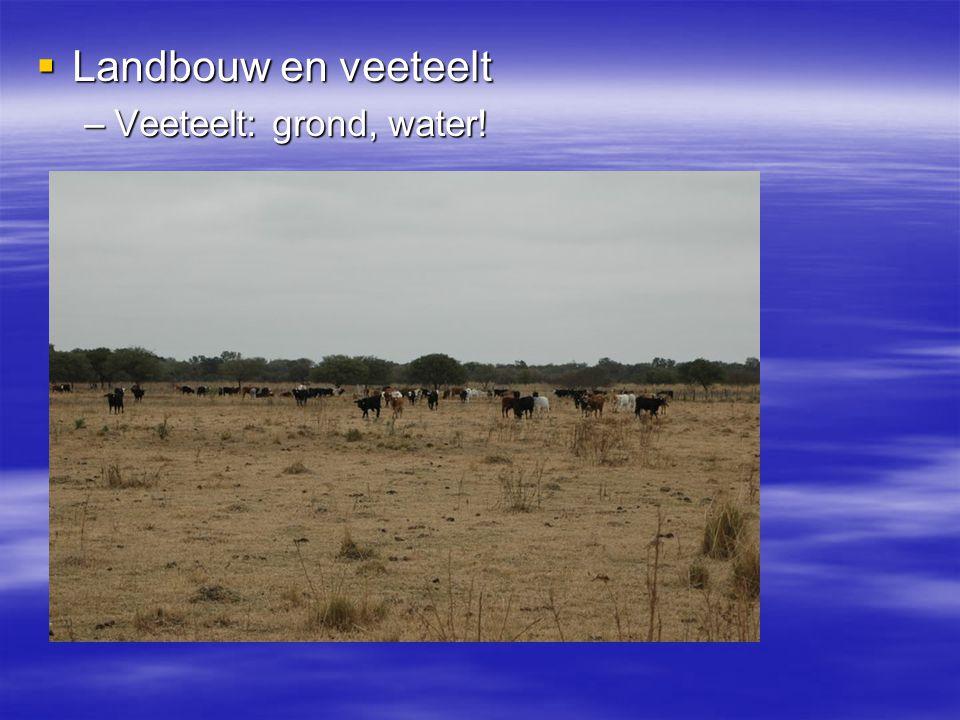  Landbouw en veeteelt –Veeteelt: grond, water!
