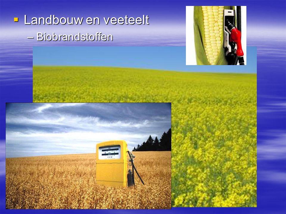  Landbouw en veeteelt –Biobrandstoffen