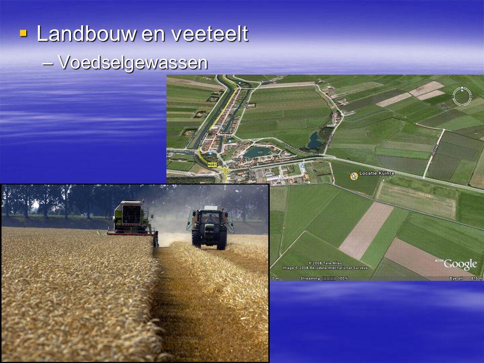  Landbouw en veeteelt –Voedselgewassen