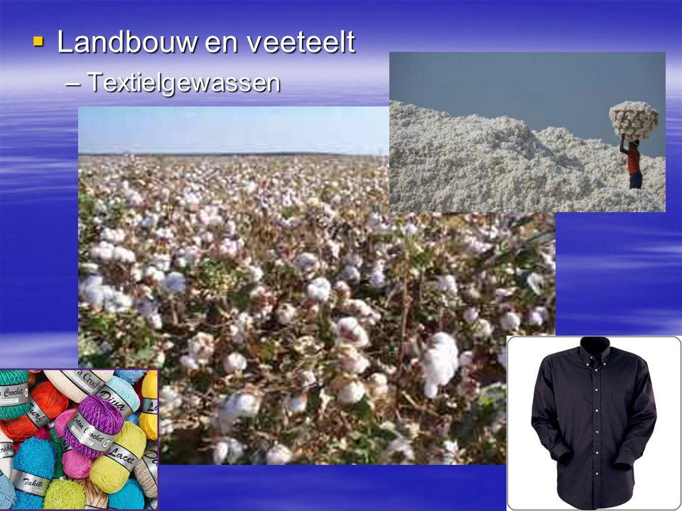  Landbouw en veeteelt –Textielgewassen