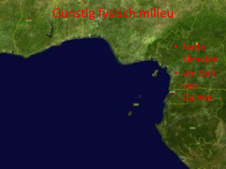 Natte klimaten Vb: Golf van Guinea