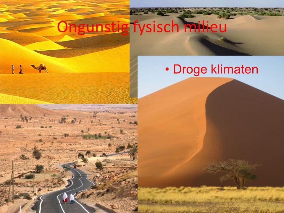 Droge klimaten