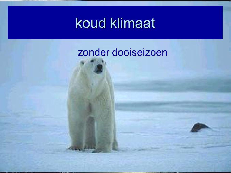 Vegetatie in koud klimaat zonder dooiseizoen = ijswoestijn (vb noordpool) Ijswoestijn klimaat