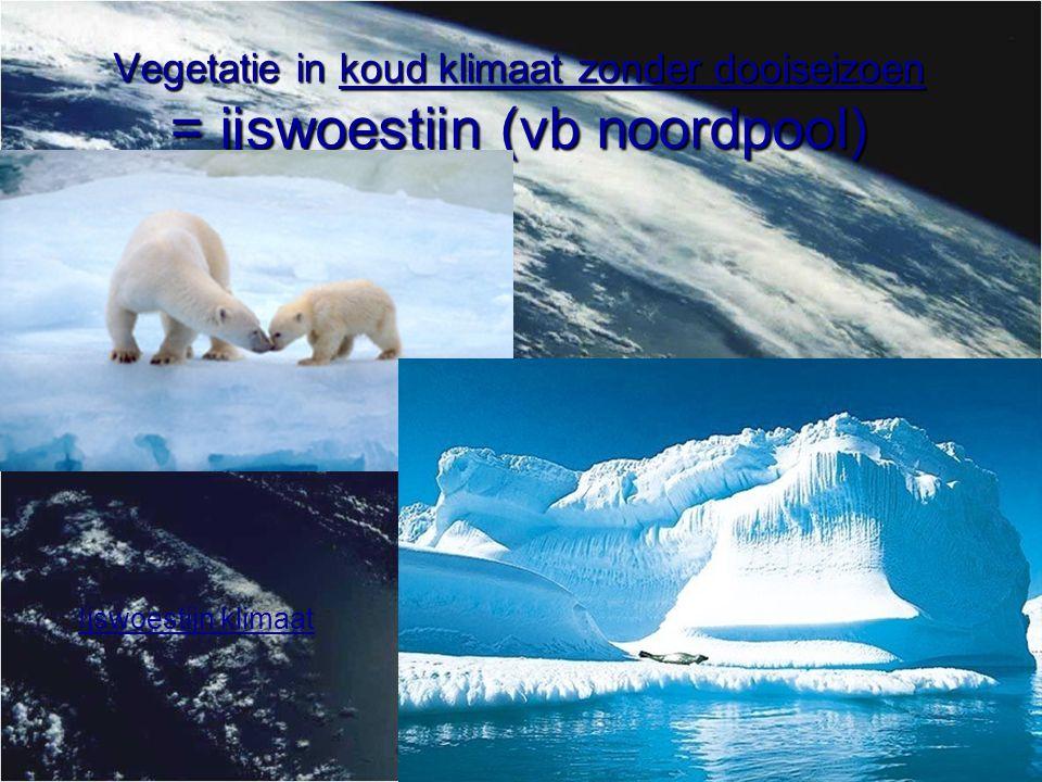 Vegetatie in koud klimaat zonder dooiseizoen = ijswoestijn (vb zuidpool) Ijswoestijn klimaat