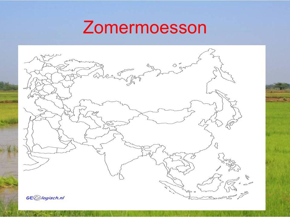 Zomermoesson