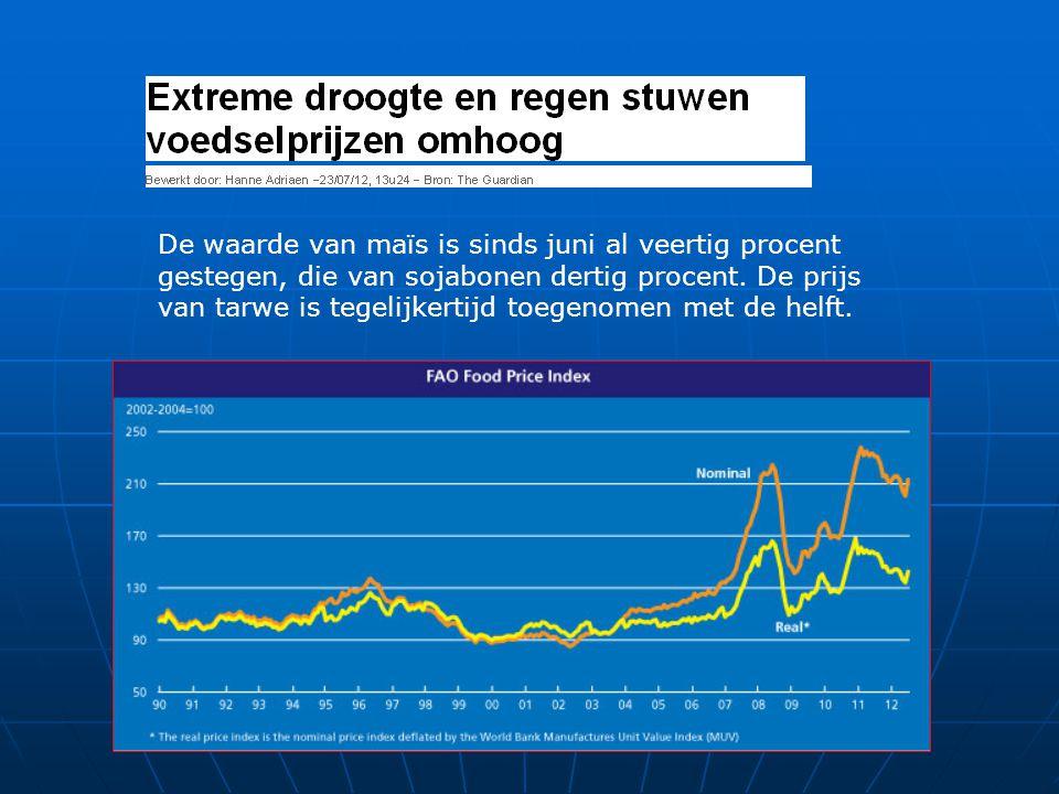 De waarde van maïs is sinds juni al veertig procent gestegen, die van sojabonen dertig procent.