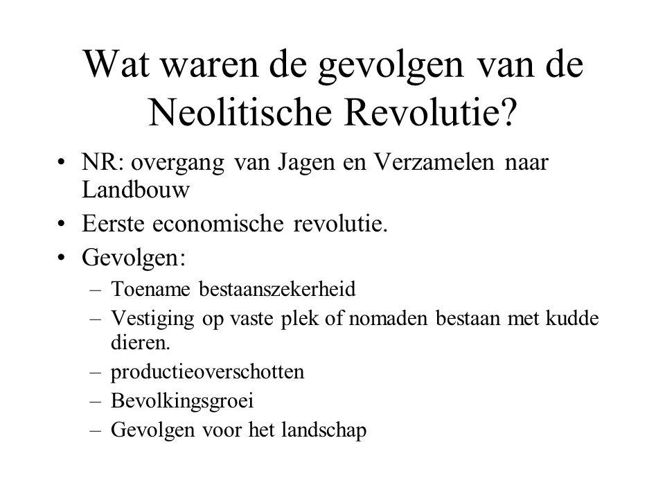 Wat waren de gevolgen van de Neolitische Revolutie.